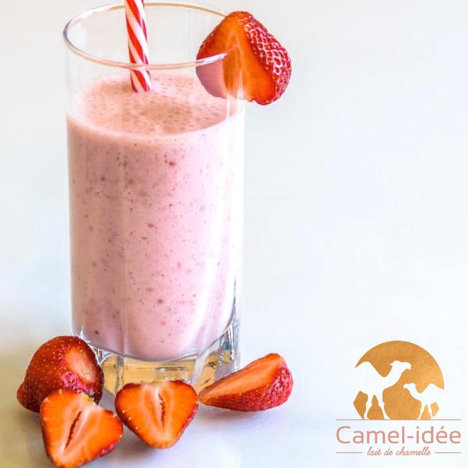 Smoothie fraise et lait de chamelle sur camel-idee