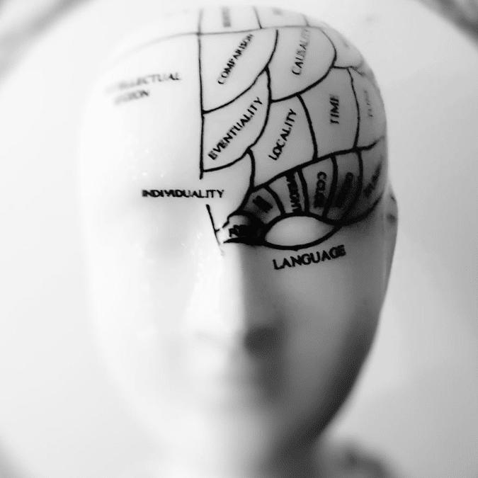 Les avantages cognitifs